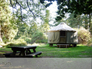 Doe Bay Yurt
